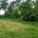 Land selection for fish farm